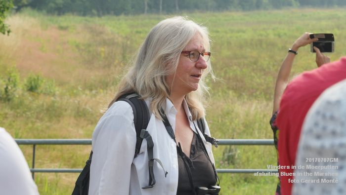 DSC07455- Vlinders in de Moerputten - afsluiting LIFE+-project Blues in the Marshes - 7juli2017 - foto GerardMontE