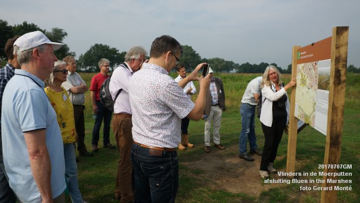 DSC07458- Vlinders in de Moerputten - afsluiting LIFE+-project Blues in the Marshes - 7juli2017 - foto GerardMontE
