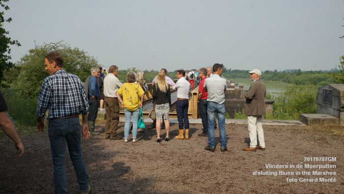 DSC07463- Vlinders in de Moerputten - afsluiting LIFE+-project Blues in the Marshes - 7juli2017 - foto GerardMontE