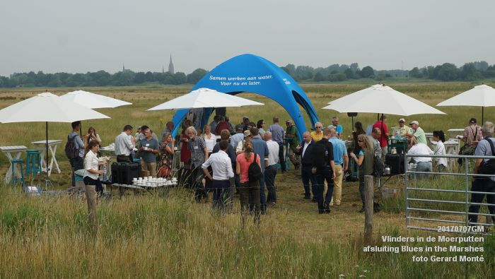DSC07485- Vlinders in de Moerputten - afsluiting LIFE+-project Blues in the Marshes - 7juli2017 - foto GerardMontE