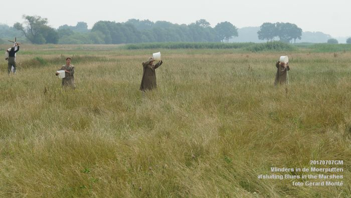 DSC07531- Vlinders in de Moerputten - afsluiting LIFE+-project Blues in the Marshes - 7juli2017 - foto GerardMontE