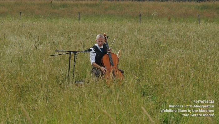 DSC07539- Vlinders in de Moerputten - afsluiting LIFE+-project Blues in the Marshes - 7juli2017 - foto GerardMontE