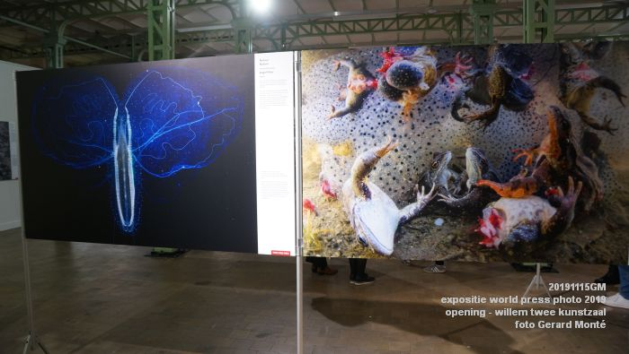 DSC04887-  expositie world press photo - Willem Twee Kunstzaal - 15nov2019 - foto GerardMontE web